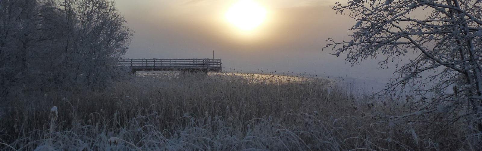 Sidsjö-Vinterbild1